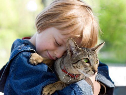 Ребенок обнимает кота