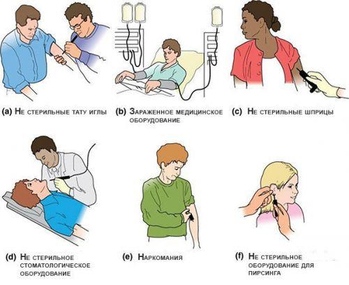 Передача вируса гепатита В