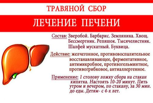 Рецепт фитосбора