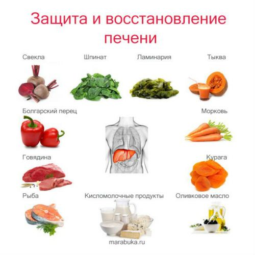 Питание для печени