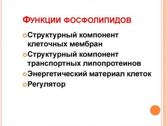 Функции фосфолипидов