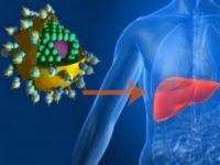 Вирус гепатита и печень